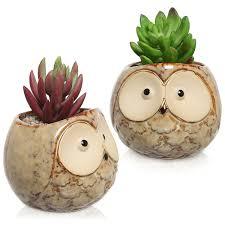Succulent Planters For Sale by Amazon Com Set Of 2 Owl Design Mini Ceramic Plant Container