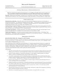General Manager Resume Sample by Examples Of A Resume Objective Resume Format Download Pdf Crafting