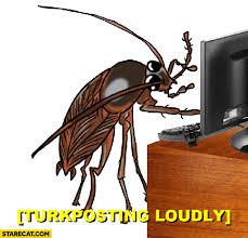 Turkish Meme - turkposting loudly cockroach turkey turkish meme animated gif