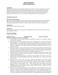 Analytics Sle Reports by 100 Analytics Consultant Resume Thesis Essay Topics