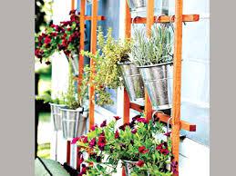 Vertical Garden Trellis - no space gardening u2013 grow upwards u2014 saturday magazine u2014 the