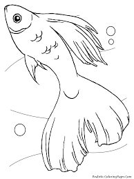 coloring pages fish tank virtren com