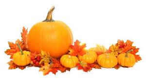 thanksgiving pumpkins themontecristos