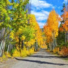 winter park colorado events outdoor activities things to do