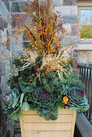 Outdoor Planters Large by Best 10 Winter Container Gardening Ideas On Pinterest Winter