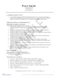 Java Web Developer Resume Sample by Resume Python Developer Free Resume Example And Writing Download