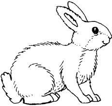 rabbit mask coloring printable craft baby animal kids pages
