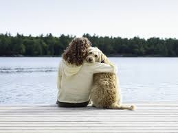 grieving loss of pet losing a pet is devastating and it s ok to not feel mentally well