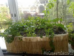 cuisiner des morilles s馗h馥s comment cuisiner les tomates s馗h馥s 52 images cuisiner tomates