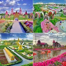 dubai miracle garden photos popsugar middle east smart living