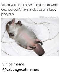 Platypus Meme - when you don t have to call out of work cuz you don t have a job