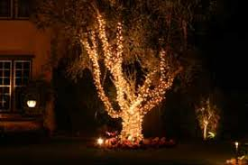showcase professional christmas lighting for your orange county