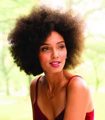 natural hair color products whole foods best hair color 2017