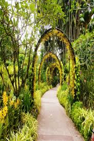 Botanical Gardens Ticket Prices 93 Best For The Images On Pinterest Botanical