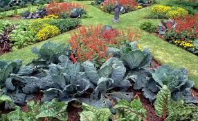 who says a kitchen garden can u0027t be beautiful finegardening