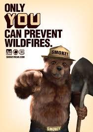 Smokey The Bear Meme - smokey the bear quotes best quote 2017