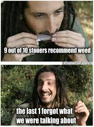 Funny Stoner Memes - 218 best pot humor images on pinterest funny images funny photos