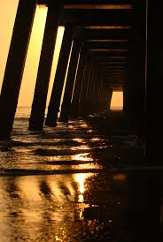 21 best the beach ocean waves and sea life images on pinterest