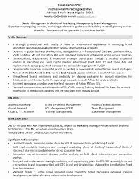 Sales And Marketing Resume Sample by Marketing Cv Format U2013 Marketing Resume Sample And Template