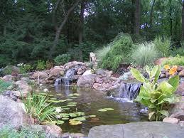 21 best ornamental pond images on ponds pond