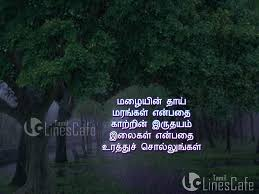 wedding quotes rainy day tree and poems in tamil tamil linescafe