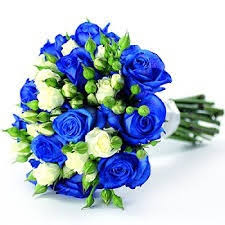 white and blue roses and white spray roses bridal bouquet