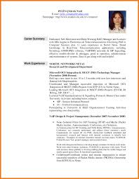 Sample Resume Summaries by 28 Resume Overview Professional Summary Resume Examples