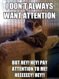 Pay Attention To Me Meme - i don t always want attention but hey hey pay attention to me