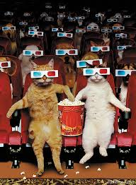 Meme Eating Popcorn - audience of cats in movie theater wearing 3d glasses and eating