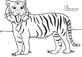 tiger pictures kids color