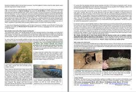 native aquatic plants uk aquatic plants archives ouse washesouse washes