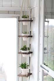 Hanging Planters Indoor by Top 25 Best Indoor Hanging Plants Ideas On Pinterest Hanging