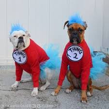 2 Halloween Costumes 1 U0026 2 Dog Halloween Costumes Dog
