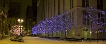 commercial lighting windy city lights