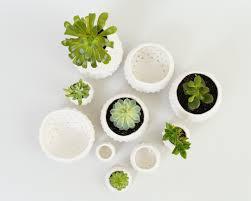 modern ceramic planters small mini plant pots handmade white