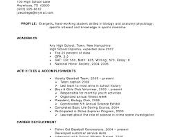 resume writers nyc resume accounting resume format resume writer nyc best sle