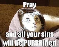 Praying Memes - pray memes best collection of prayer anime meme memes best