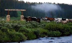 nine quarter circle montana dude ranch