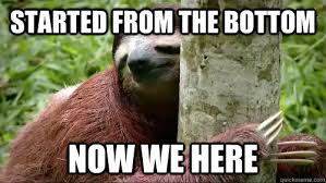 Best Sloth Memes - americam dream is all about reaching the height of one s personal