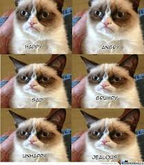 Unhappy Cat Meme - emotions of grumpy cat by ronald foks meme center