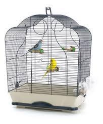 gabbie per canarini savic isabelle gabbia per uccelli