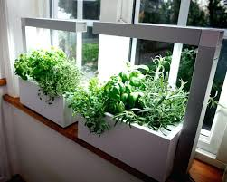 lights to grow herbs indoors how to grow an herb garden indoors bigsupercar club