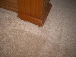 square foot home depot carpet prices per square foot lovely top 345 plaints