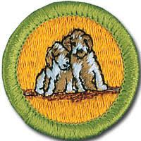 dog care meritbadgedotorg