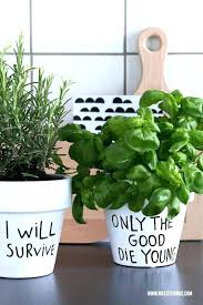 indoor windowsill planter windowsill pots best kitchen herbs ideas on indoor herb garden and