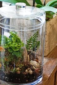 33 best mini garden images on pinterest gardening landscaping