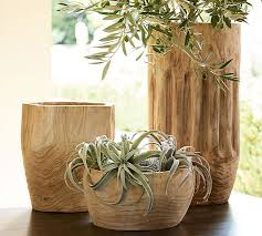 Vase Sets Faux Tillandsia Succulent Stem Pottery Barn