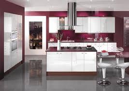 Kitchen Designed Kitchen Silver Lotus