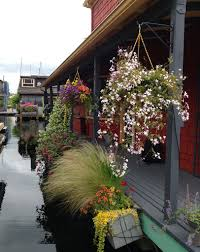 Fragrant Plants For Pots Beautifying Seattle One Pot At A Time U2014 Swansons Nursery