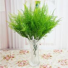 Flower Decoration For Home by Compare Prices On Asparagus Fern Plants Online Shopping Buy Low